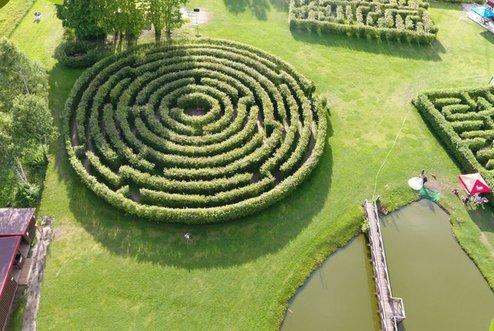Ekskursijos į medžių lajų taką. Labirintas